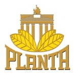 Planta Tabak
